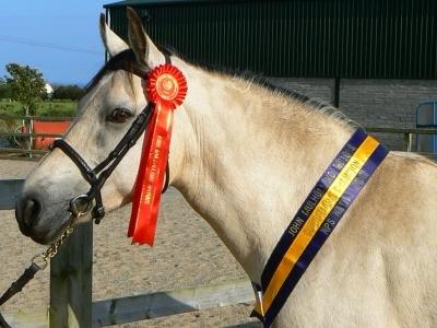 Pearl taking Champion Connemara 2007