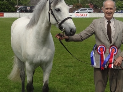 Poppy - Ballymoney Show 2011