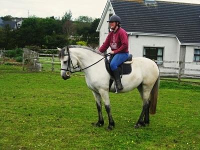 Poppy begins her ridden education 2011