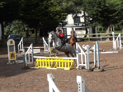 Marty - Schooling at Maddybenny 2013