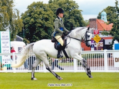 Poppy coming second at Dublin Horse Show 2013